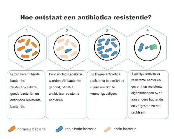 Ontstaan_antibioticaresistente_bacterie-1